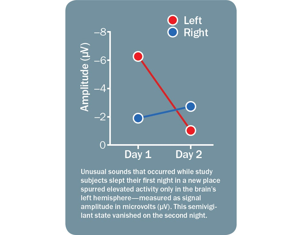 Sleeping with Half a Brain - Scientific American