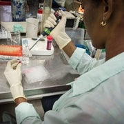 Can Cuban Science Go Global?