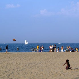 DNA Tests Offer Quicker Results for Beach Bacteria