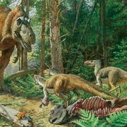 Rise of the <i>Tyrannosaurs</i>
