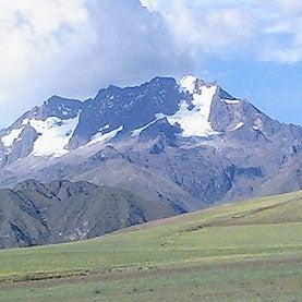 Rising Temperatures Push Andean Species Skyward