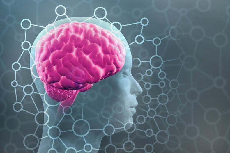 New Estimate Boosts the Human Brain's Memory Capacity 10-Fold