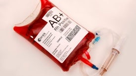 Young-Blood Transfusions Are on the Menu at Society Gala