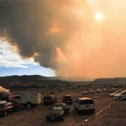 Colorado Fire Follows in Pine Beetles' Tracks