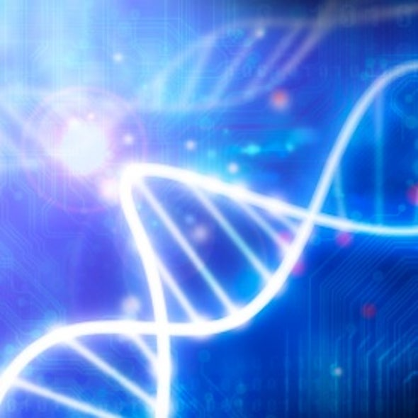 """""""Junk"""" DNA Holds Clues to Common Diseases"""