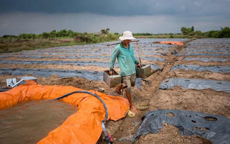 New Elevation Measure Shows Climate Change Could Quickly Swamp the Mekong Delta - Scientific American