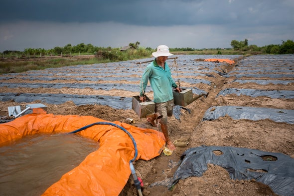 New Elevation Measure Shows Climate Change Could Quickly Swamp the Mekong Delta