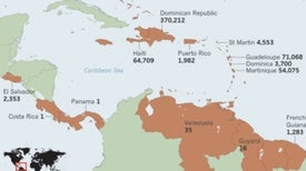 Asian Tiger Mosquito Could Expand Painful Caribbean Virus into U.S.