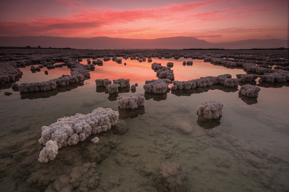 The Not So Dead Sea: Traces of Ancient Bacteria Found in the Lake's Sediments