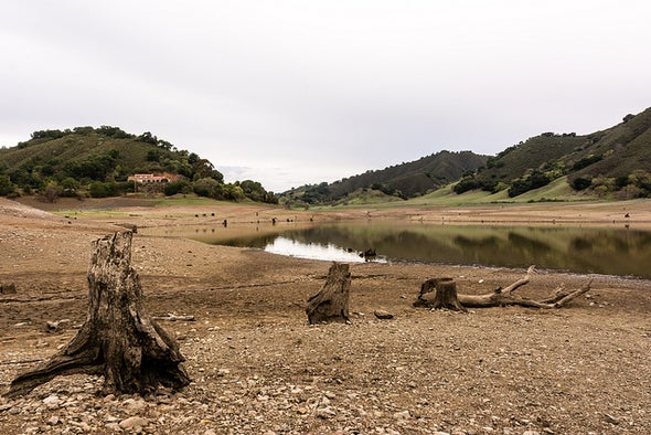 Native Ecosystems Blitzed by Drought