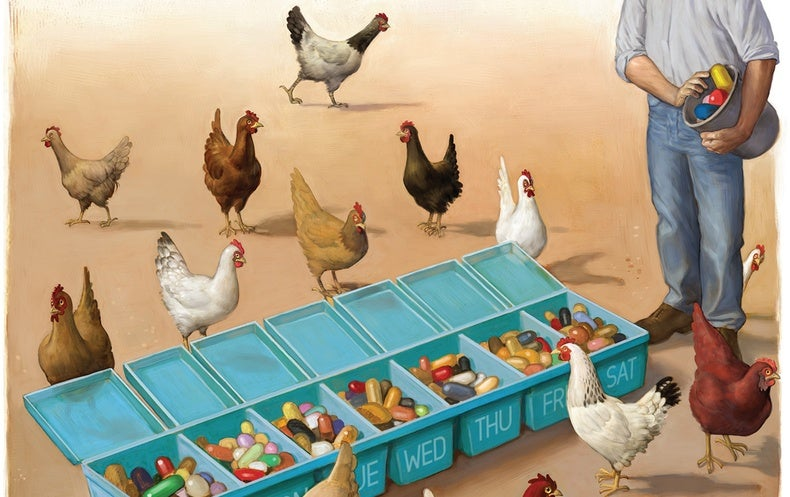 Maryn McKenna's Book Big Chicken Looks at Poultry's Effect on Antibiotic Resistance