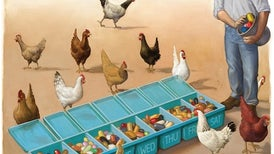 Maryn McKenna's Book <i>Big Chicken</i> Looks at Poultry's Effect on Antibiotic Resistance