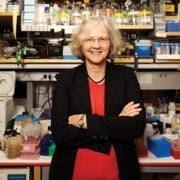 Actuary of the Cell: A Q&A with Nobelist Elizabeth Blackburn on Telomeres and Aging Cells