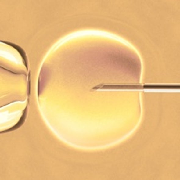 Test-Tube Babies May Face Greater Health Risks Than Naturally Conceived Children