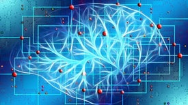 """Neuroscience Discovers Power of """"Lesion Network Mapping"""""""