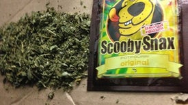 Synthetic Cannabinoid Poisonings Surge in U.S.