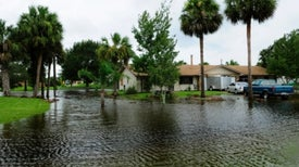 Changed Climate Already Inflicts Damages at Home, U.S. Reports