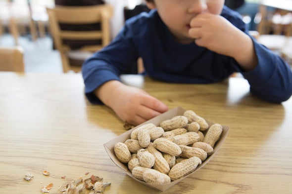 Should More Kids Eat Nuts?