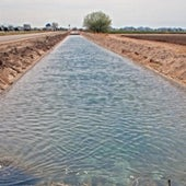 CONSERVE IRRIGATION WATER