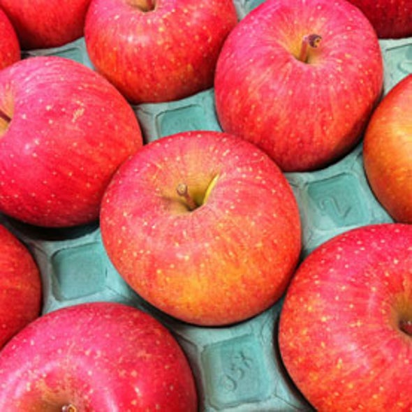 Climate Change Threatens Crunchy, Tart Apples