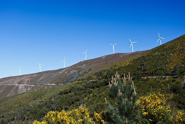 World's Largest Wind-Mapping Project Spins Up in Portugal