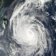 Hurricane Forcing: Can Tropical Cyclones Be Stopped?
