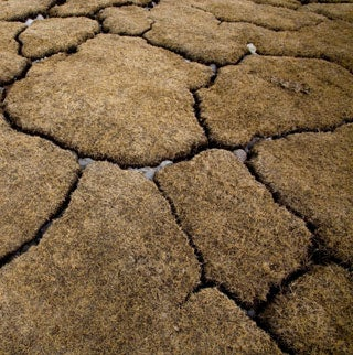 Not-So-Permafrost: Big Thaw of Arctic Soil May Unleash Runaway Warming