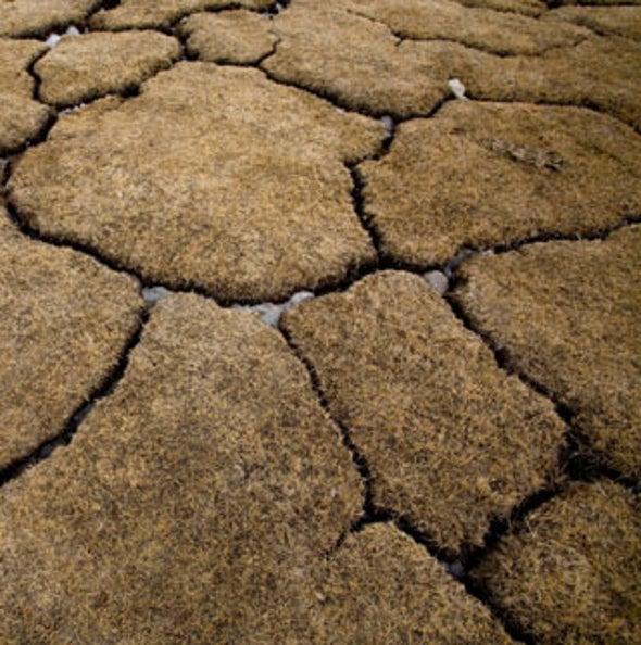 Not-So-Permafrost: Big Thaw of Arctic Soil May Unleash Runaway Warming