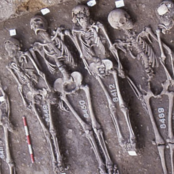 How Black Death Kept Its Genes but Lost Its Killing Power [Video]