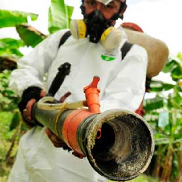 Fungicide Use Surges, Largely Unmonitored