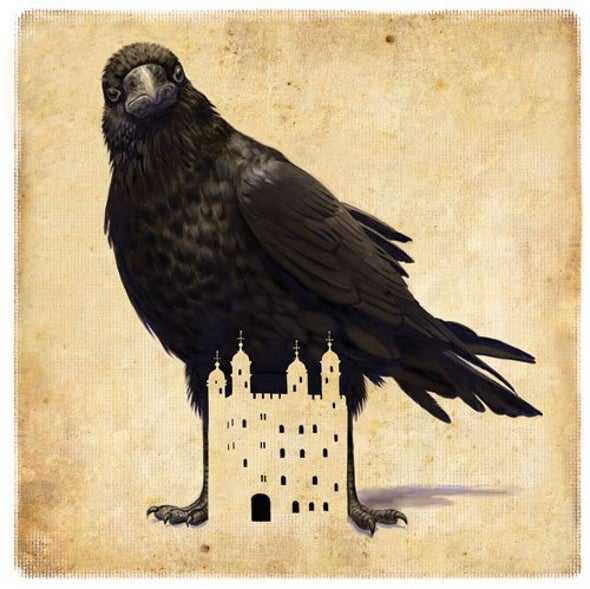 Ravenmaster Christopher Skaife Tells of His Relationships with the Tower of London's Resident Birds