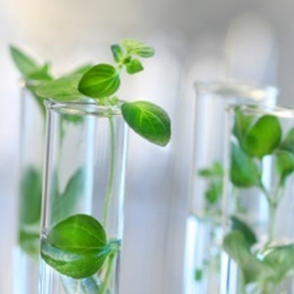 "Green Chemistry: Scientists Devise New ""Benign by Design"" Drugs, Paints, Pesticides and More"