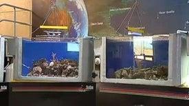 Australia's Sea Simulator a Boon for Reef Research