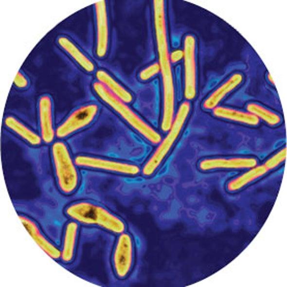 Botulism Bioterror Worries Keep Research under Wraps