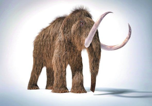 Story of Mammoth Survival Is in the Soil
