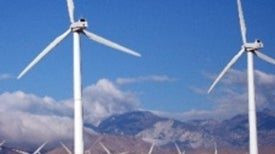 Can the Green Economy Survive in a Policy Vacuum?