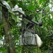 Rainforest Climate Change Sensor Station Goes Wi-Fi