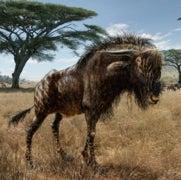 Weird Ancient Wildebeest Sported Duck-Billed Dinosaur Nose