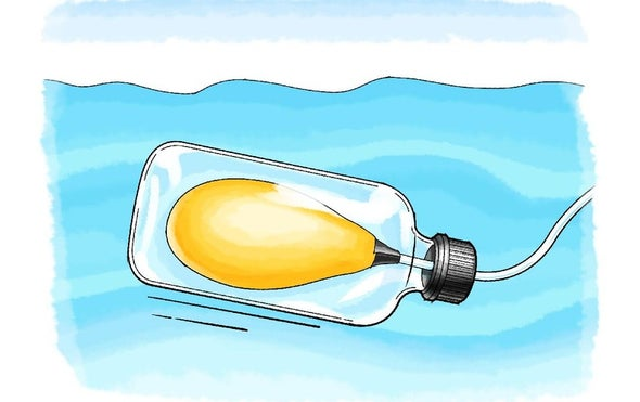 Floating with a Swim Bladder