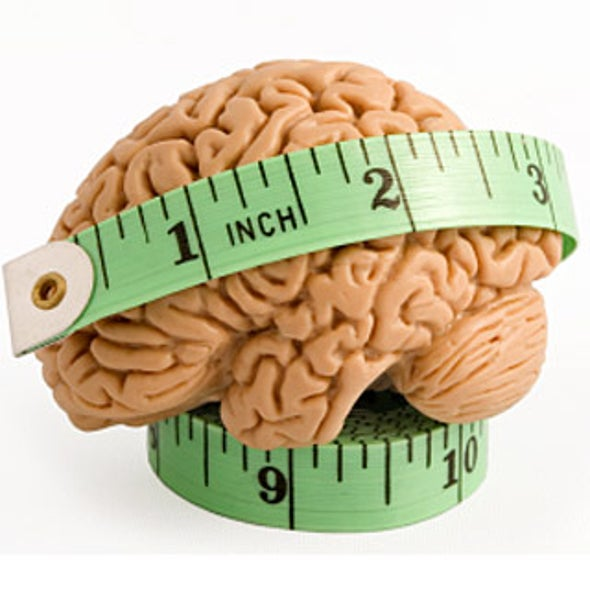 Study: Higher body mass index (BMI) linked to episodic ... |Measure Advertisment Mind