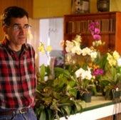 ORCHID FARMER: