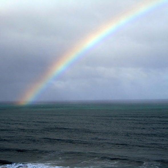 Tiny Ocean Plants Geoengineer Brighter Clouds