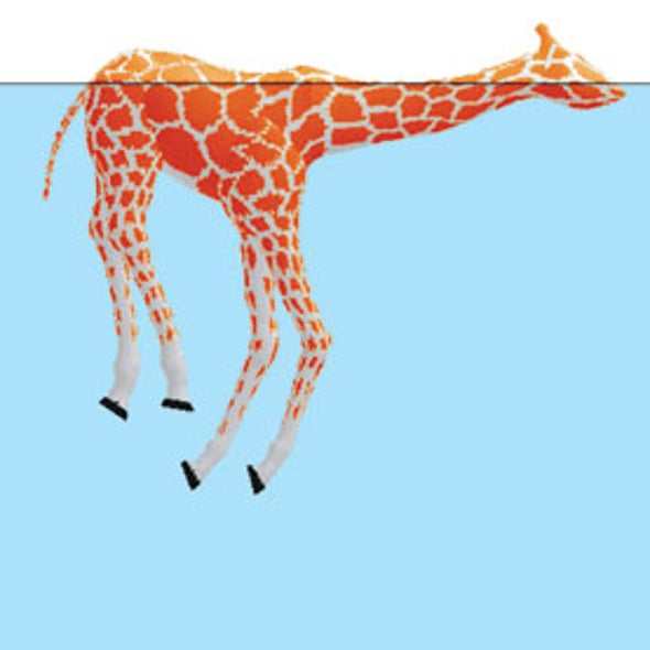Do Giraffes Float?
