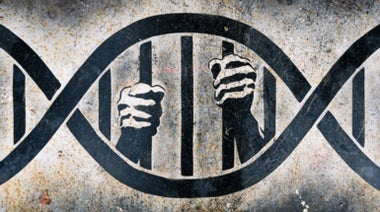 Should Prisoners Be Used in Medical Experiments?