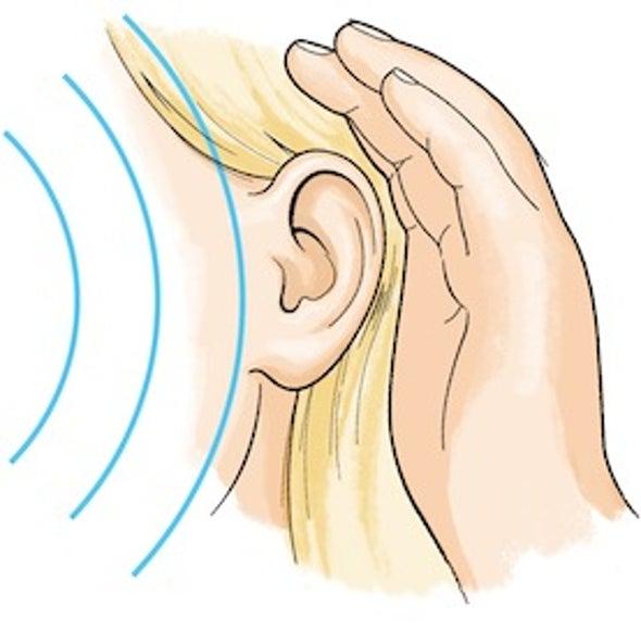 声音科学:噪音来自哪里?
