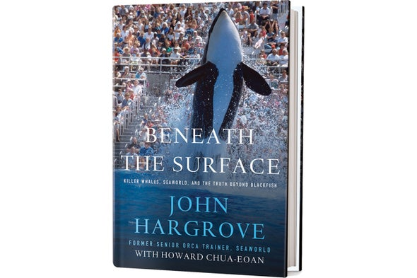 Book Review: Beneath the Surface