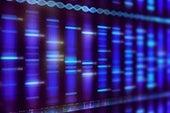 知道你的遗传风险会改变你的生理学吗?
