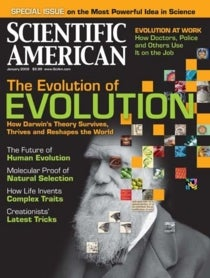 Evolution Of The Mind 4 Fallacies Of Psychology Scientific American