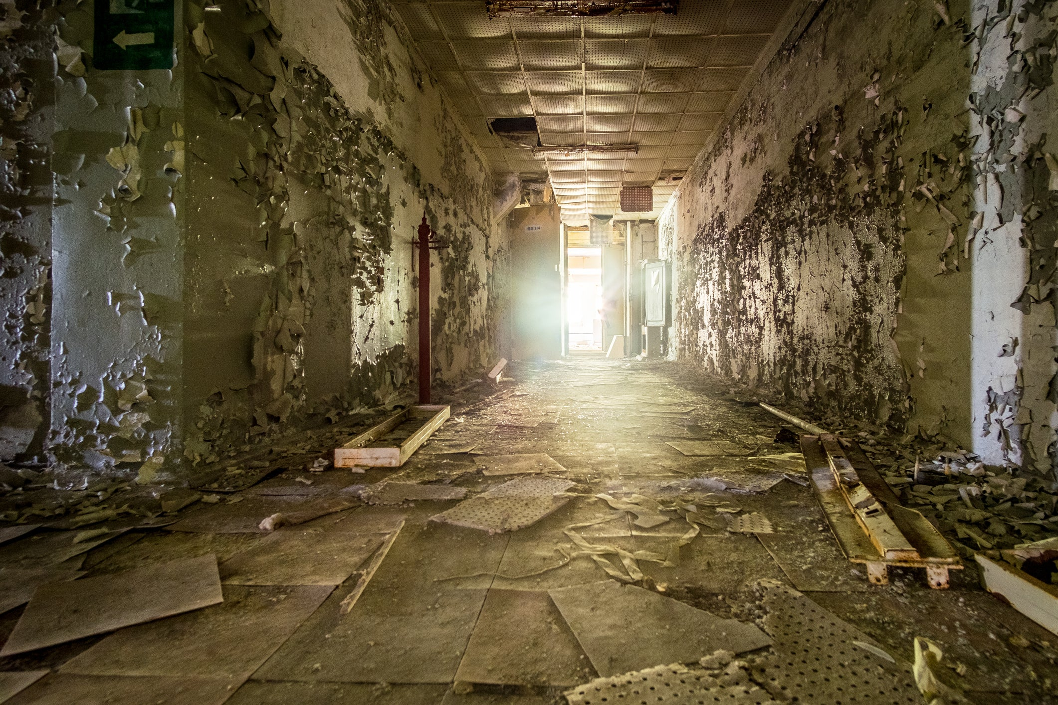 What Is Chernobyl Like Today? - Scientific American