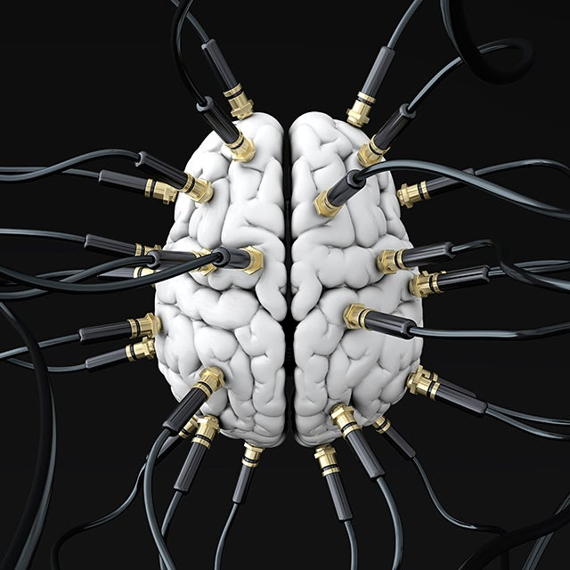 How Your Brain Is Wired Reveals the Real You